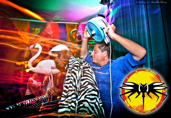 """Mosquito """"Clubbing"""" at Carnival Cruise 2016"""